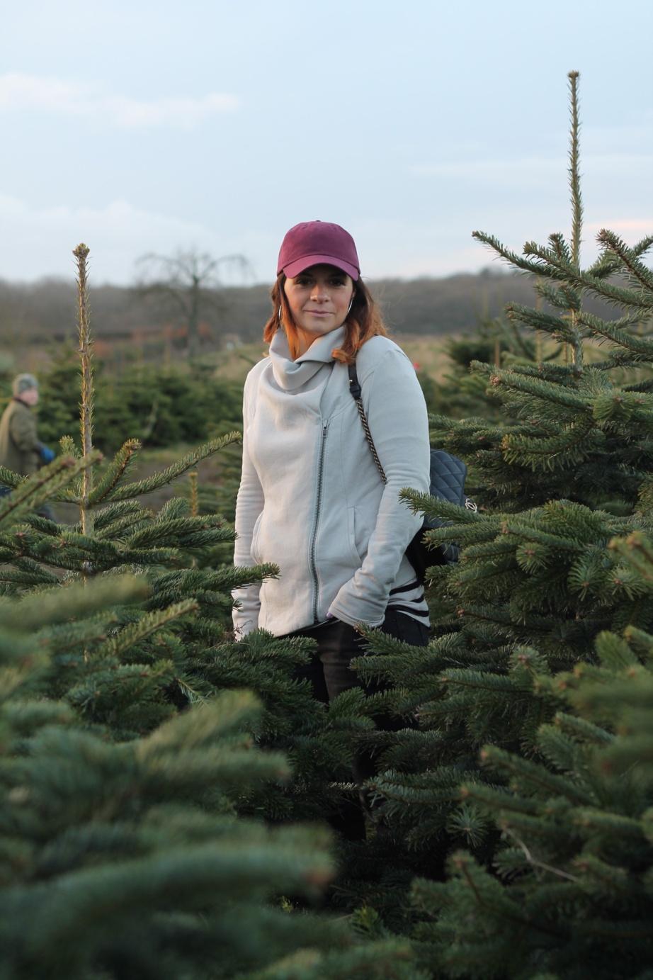 xmas_tree_lang_2