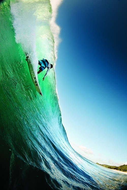 surfer_tumblr